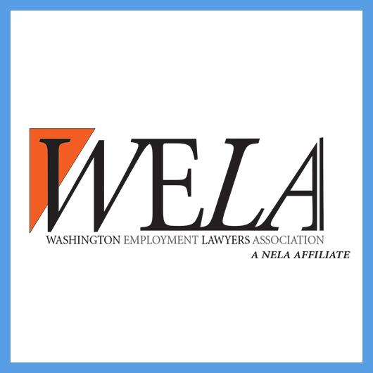 WELA-logo-website blue box